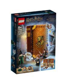 LEGO Harry Potter Lezione di trasfigurazione a Hogwarts – 76382